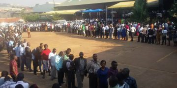 The long winding lines of people queuing  for new driving permits.